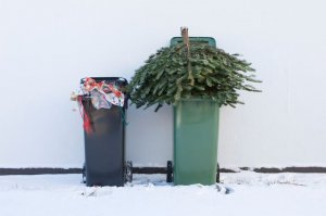 Photo of bins with Christmas Waste